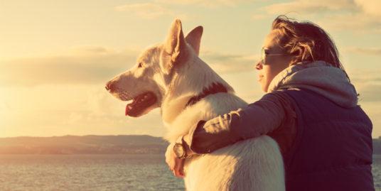 Un perro y su dueña en la playa.